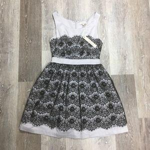 ModCloth Minuet lace party dress, size S.